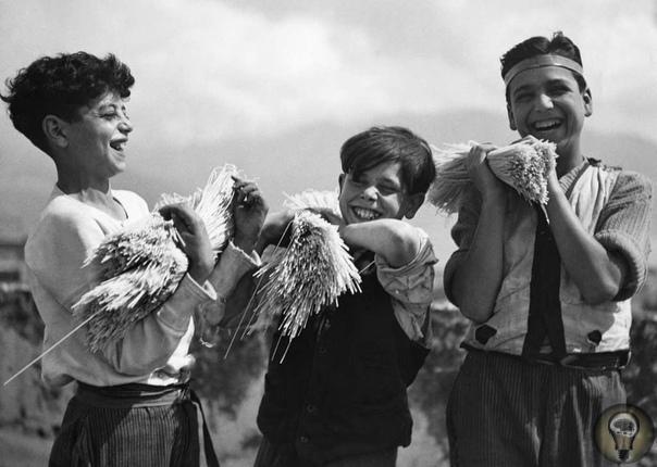 Как делается паста: радостные летние фото начала XX века.