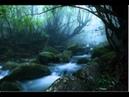 Beautiful Japanese Song Kienai Yoru performed by Alan Roubik