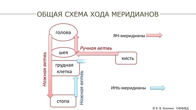 Промо файл урока 3 Закономерности хода главных меридианов