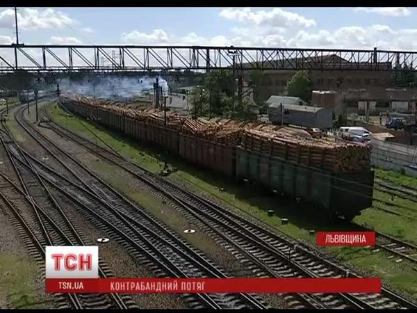 На Львівщині активісти затримали понад півсотні вагонів із контрабандною деревиною