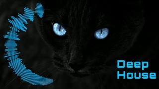 Deep House / Jeremy Vancaulart & Assaf feat. Laura Aqui - The Space Between (Original Mix)