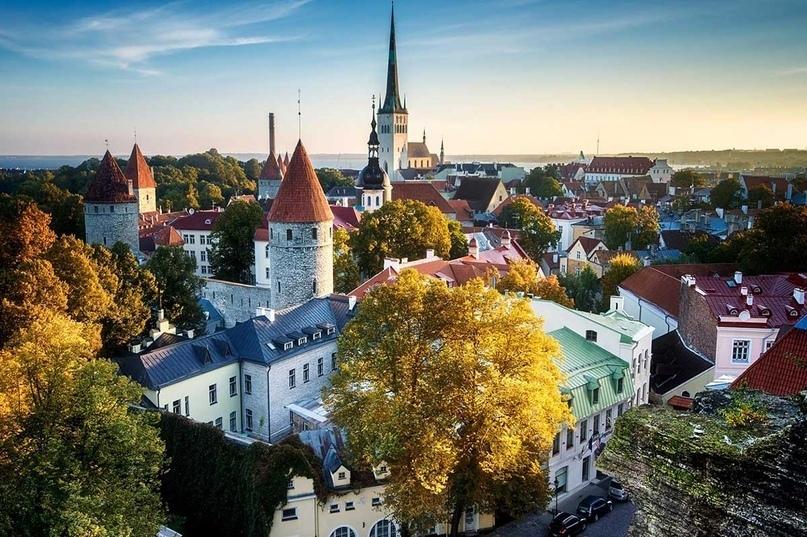 Страны мира — Эстония, изображение №4