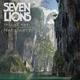DFM   - Seven Lions - Falling Away (feat. Lights)