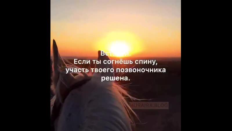 VID_28590825_200443_455.mp4