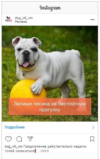 Кейс: продвижение стартапа по выгулу собак, изображение №19