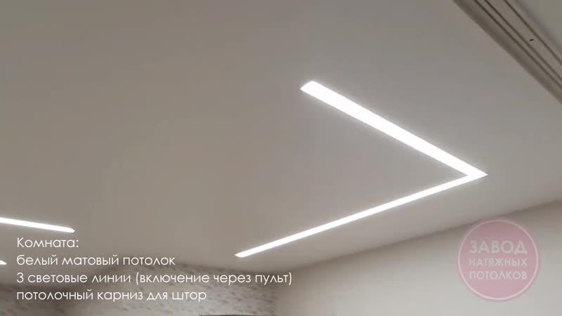 Натяжные потолки Вологда С освещением из световых линий