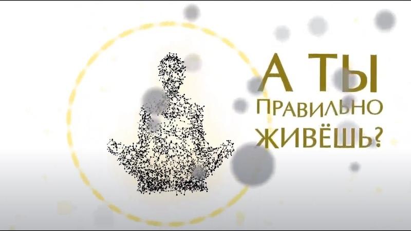 СИЛА СМЫСЛОВ ¦¦ Академия Человека Анатолия Ковгана