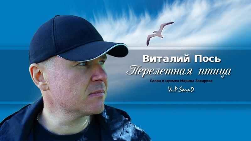 Виталий Пось Перелетная птица Official Video 2019