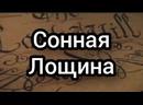 СОННАЯ ЛОЩИНА.mp4