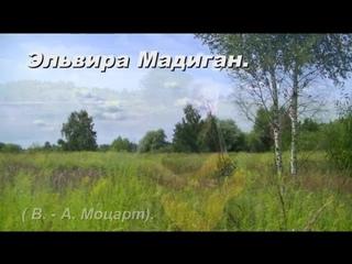 Александр Шилков.  Эльвира Мадиган (В-А. Моцарт).