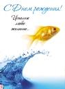 Рыбы | группа