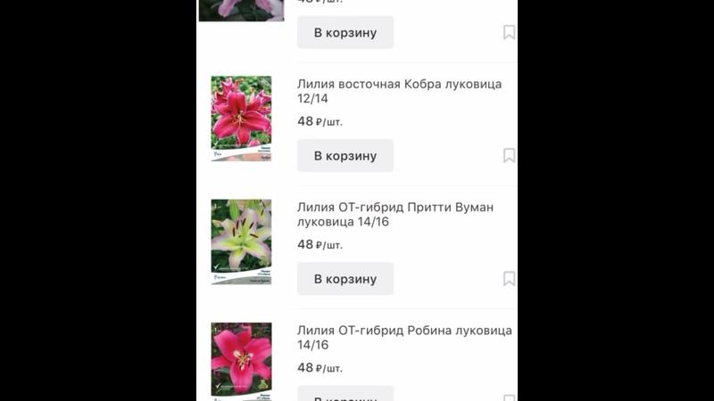 Видео от Леруа Мерлен Воронеж LEROY MERLIN