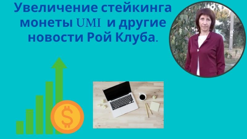 Увеличение стейкинга монеты UMI и другие новости Рой Клуба