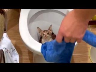 😱 После просмотра этого ролика заходить в ванную б...