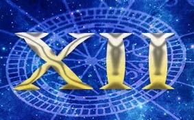 Основы Астрологии. Венера в Домах гороскопа., изображение №12