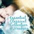 Newborn essential collection