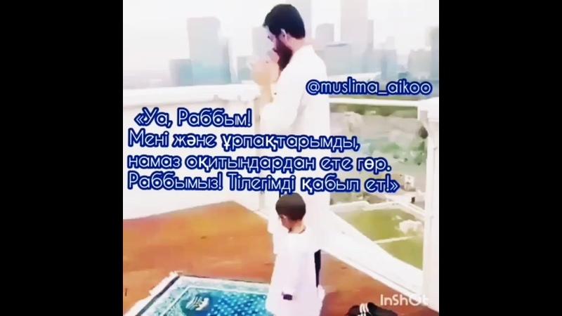 Салиқалы ұрпақ нәсіп етсін 😍