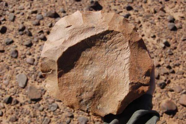 Каменные орудия (3,3 млн. лет) На фотографии камень выглядит невзрачно и похож на обычный кусок скальной породы. Но на самом деле, покромсанный булыжник одна из самых нашумевших археологических