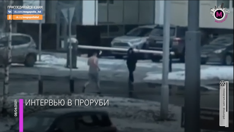 Мегаполис - Людей напугал морж - Сургут
