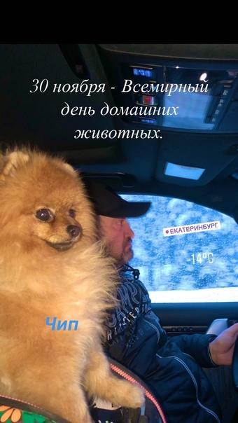 Сергей Ершов -  #8