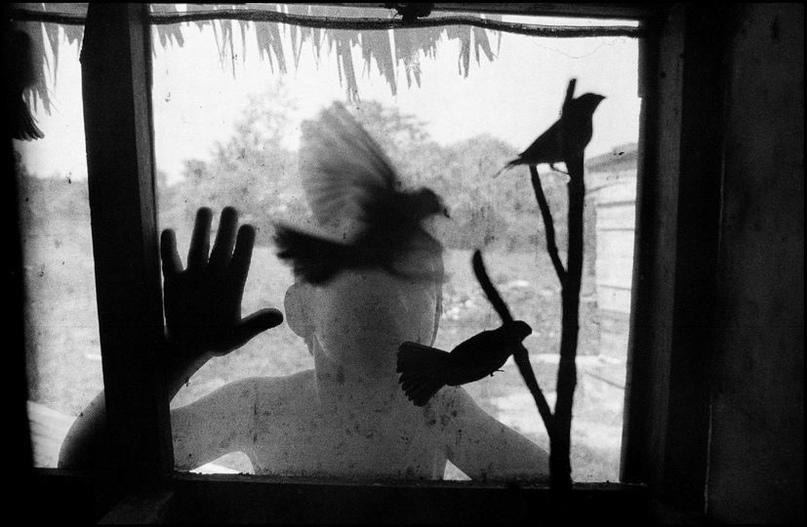 Это фотография из серии о сельской жизни на Кубе, которую Рауль Каньибано начал...