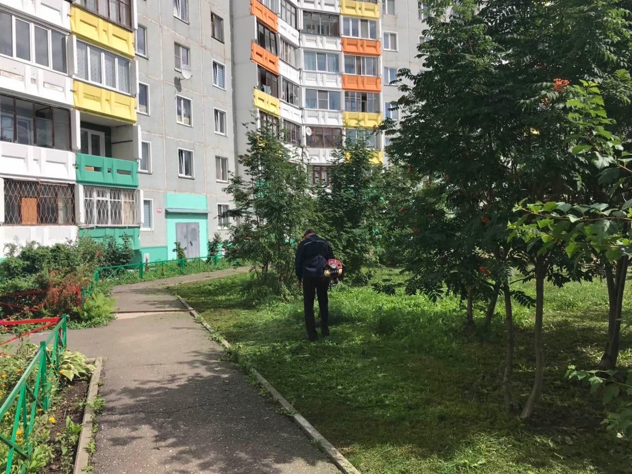 Улица Ульяновская дом 6 кошение травы