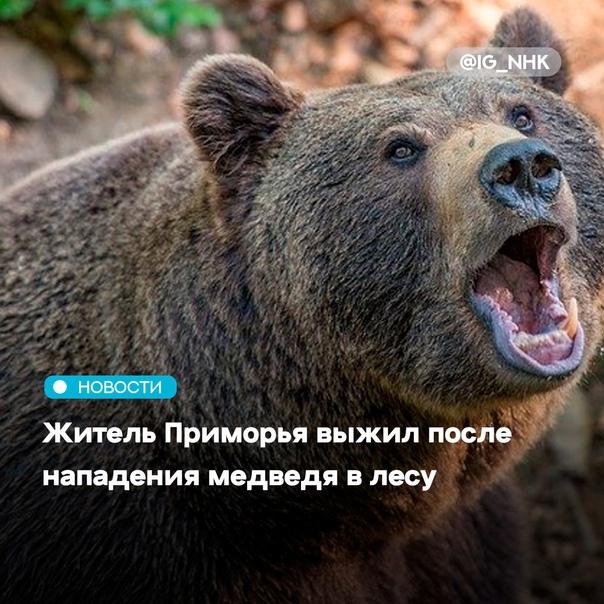 Жителя поселка Ольга в Приморском крае госпитализи...