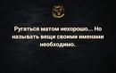 Andrey Menshchikov фотография #1