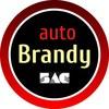 Автомобильная кожа Brandy/кожа для тюнинга авто