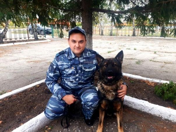 Собака Один помогла задержать ворюгу в Самарской о...