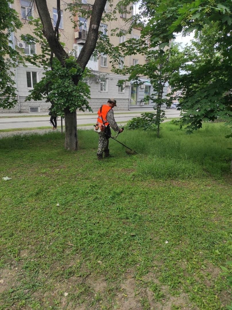 МКУ «Благоустройство»: В городе Таганроге продолжается покос травы