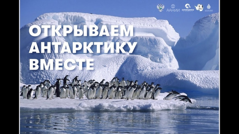 Открываем Антарктику вместе