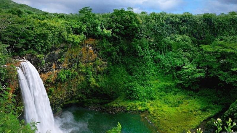 Остров Оаху и Кауаи I Лучшие путешествия I Страны Тихоокеанского бассейна I Гавайи