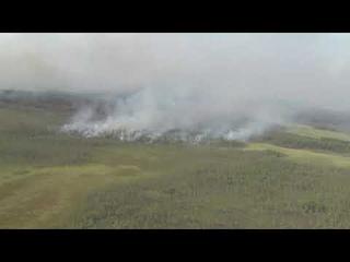 Югра в огненном кольце! Лесные пожары подошли к населенным пунктам.