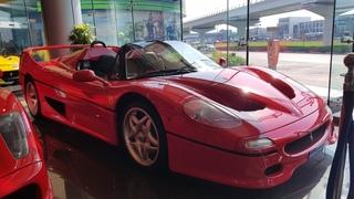 Ferrari F50 (English)