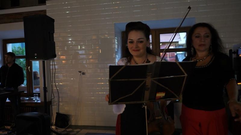 Soro lume Nunta Moldoveneasca Vioara Formatia Guguţă