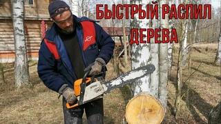 Как быстро распилить дерево. Наш способ.