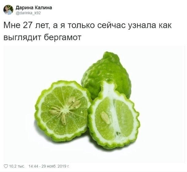 https://sun9-40.userapi.com/c200416/v200416588/3792d/XccvkwspvL0.jpg