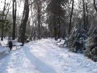 Зимний день 21 ноября 2018 года в парке Революции в г.Ростове-на-Дону.Владислав Махмудов - Live