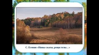 Страна читающая— ТатьянаТельканова читает произведение «Нивы сжаты, рощи голы…» С.А.Есенина