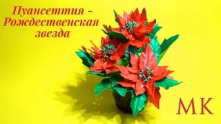 Пуансеттия. Рождественская звезда. Простой цветок из остатков изолона. МК